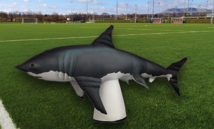 ExpandaBrand-Custom-Advertising-Inflatable-shark