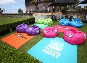 Branded Bean Bags Cricket