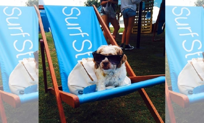ExpandaBrand-Custom-Printed-Deck-Chairs-SurfStitch2