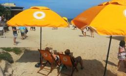 ExpandaBrand-Printed-Market-Umbrellas_Macquarie-Bondi-